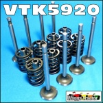 VTK5920 Exhaust Inlet Valve Train Kit Massey Ferguson MF FE35, 35, 135 Tractor with Standard Vanguard 87mm Engine